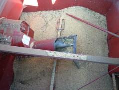 Bei Qualitätssoja sollte der Dreschertank nicht weit über die Befüllschnecke hinaus befüllt werden. Sonst kommt es verstärkt zu Bruch in der Schnecke. Foto: Taifun Tofuprodukte