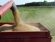 Läuft die Schnecke unter Volllast, so entsteht weniger Bruchkorn an den Förderorganen. Foto: Taifun Tofuprodukte